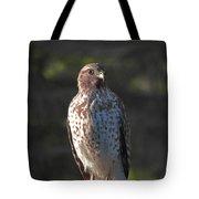 Heartful Hawk Tote Bag