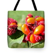 Hearts-a-bursting Seed Pods Tote Bag by Duane McCullough