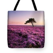 Heather At Sunset Tote Bag