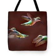 Heavenly Birds Tote Bag