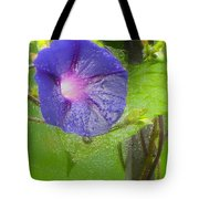 Heavenly Blue Tote Bag