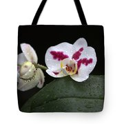 Heavenly Tranquility Tote Bag