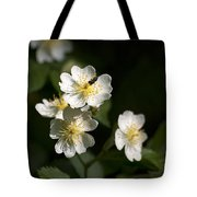 Heaven's Scent Tote Bag by Christina Rollo