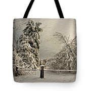 Heavy Laden Blizzard Tote Bag by Lois Bryan