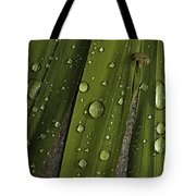 Heavy Rain Tote Bag
