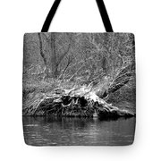 Hedge Witch Bw Tote Bag