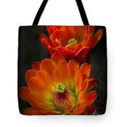 Hedgehogs In The Morning Light  Tote Bag