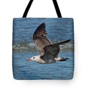 Heermanns Gull Tote Bag