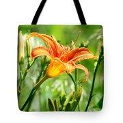 Heightened Awareness  Tote Bag