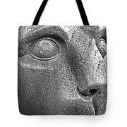 Heinz Warneke's Mountain Lion Tote Bag