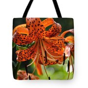 Heirloom Beauty Tote Bag