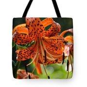 Heirloom Beauty Tote Bag