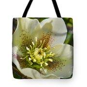 Helleborus Bright Tote Bag