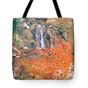 Life Is An Arbitrary Eruption Of The Inexplicable And Ineffable.  Tote Bag