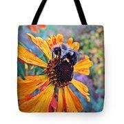 Helenium Bumble Bee Tote Bag