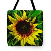 Helianthus Annus - Sunnydays Tote Bag