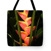 heliconia from Costa Rica 8 Tote Bag