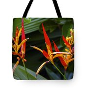 Heliconia Psitacorum Tote Bag