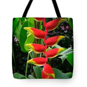 Heliconia Rostrata 2 - A Blooming Heliconia Rostrata Flower Tote Bag