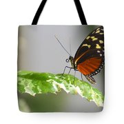 Heliconius Butterfly On Green Leaf Tote Bag
