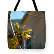 Helicopter Seeds 3 Tote Bag