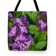 Heliotrope Flowers In Bloom Tote Bag