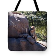 He'll Never See It Coming Tote Bag