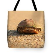 Hello  Anyone Home Tote Bag