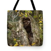 Hello Is There Anybody Out There? Tote Bag