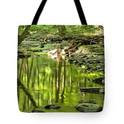 Hells Run Reflections Tote Bag by Adam Jewell