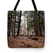 Hemlock Forest Tote Bag