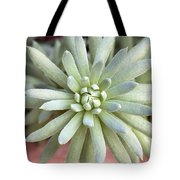 Hen And Chick Miniature Succulent Macro Tote Bag