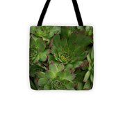 Hen And Chicks Tote Bag by Sharon Duguay