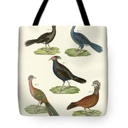 Hen-like Birds Of Hot Countries Tote Bag