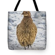 Hen Pheasant In The Snow Tote Bag