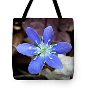 Hepatica Blue Tote Bag