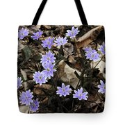 Hepatica Tote Bag