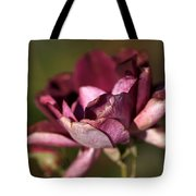 Her Beauty Of Age Tote Bag