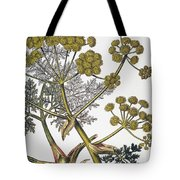 Herbal: Fennel, 1819 Tote Bag