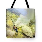 Herbivorous Tote Bag
