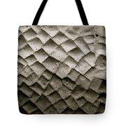 Herculaneum Wall Tote Bag