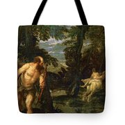 Hercules Deianira And The Centaur Nessus Tote Bag