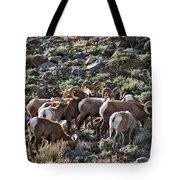 Herd Of Horns Tote Bag
