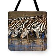 Herd Of Zebras Drinking Water Tote Bag
