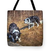 Herder And Herded Tote Bag