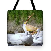 Here Fishy Fishy Fishy  Tote Bag