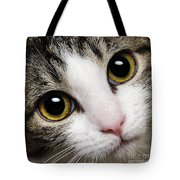 Here Kitty Kitty Close Up Tote Bag by Andee Design