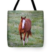 Here She Comes Tote Bag
