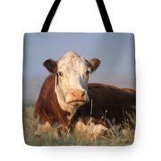 Hereford Cow Tote Bag by Alan and Sandy Carey