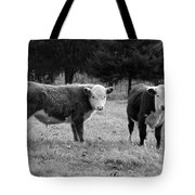 Hereford Portrait V In Black And White Tote Bag by Suzanne Gaff
